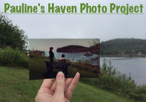 Pauline's #SaveHaven Photo Project
